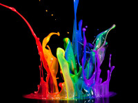 Photography-Certification-Color