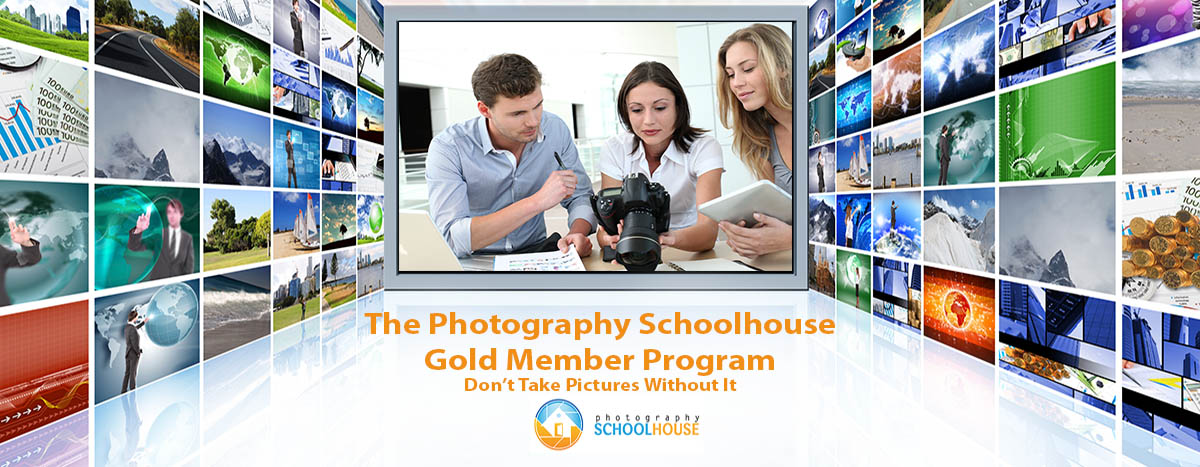 gold-member-program-photography